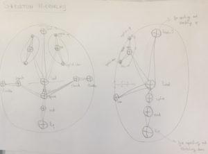 Skeleton hierarchy sketch